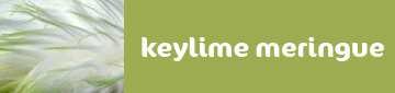 keylimetop